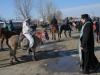 botezul-cailor-bailesti-2015-35