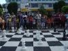 carnavalul-sahului-calafat-034