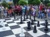 carnavalul-sahului-calafat-035