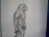 expozite-evolutionism-bailesti-2012-06