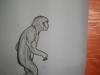 expozite-evolutionism-bailesti-2012-08