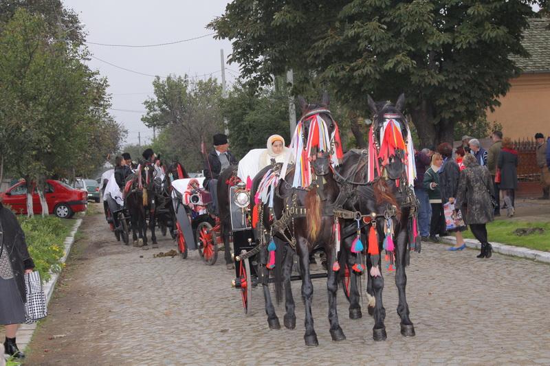 festivalul-zaibarului-bailesti-2410