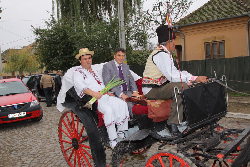 festivalul-zaibarului-bailesti-2413