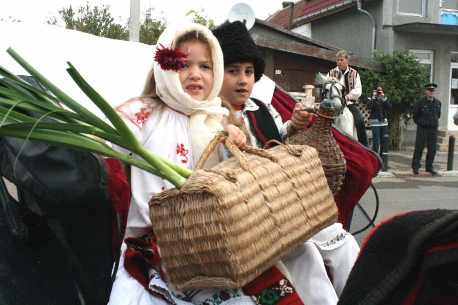 Festivalul Zaibarului 2008