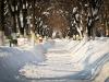 bailesti-iarna-2012-008