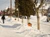 bailesti-iarna-2012-025