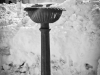 bailesti-iarna-2012-034