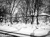 bailesti-iarna-2012-081