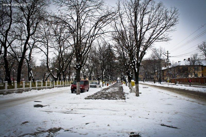 Iarna la Bailesti 2011
