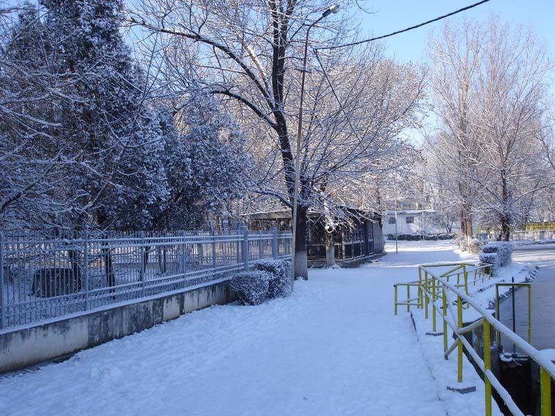 Parcul Balasan