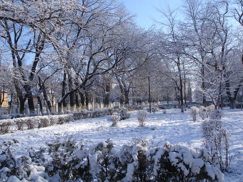 Parcul Bailesti