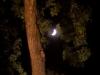 bailesti-sarbatoarea-zaibarului-2012-ziua-1-045