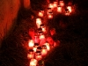 bailesti-comemorare-amza-pellea-2011-135