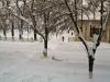 bailesti-iarna-bulevard1