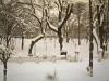bailesti-iarna-parc